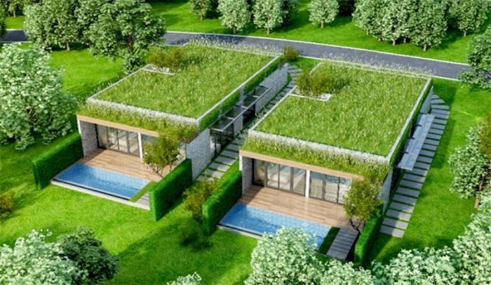 Trồng nhiều cây xanh ở quanh nhà.